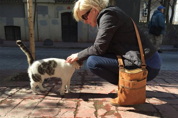 Ontario Pet Photographer Karen Black saying merhaba to a local street cat in Istanbul
