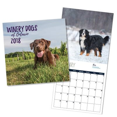 Preview of the Winery Dogs of Ontario calendar