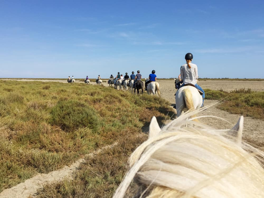 horseback riding on the beach in the Camargue