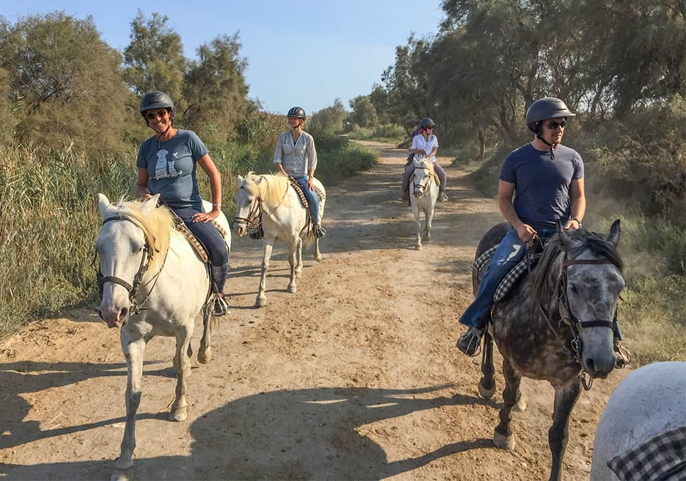 riding horses with Nicole Begley in Camargue