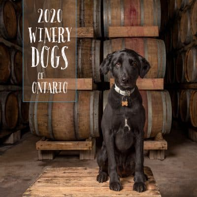 2020 Winery Dogs of Ontario Calendar cover
