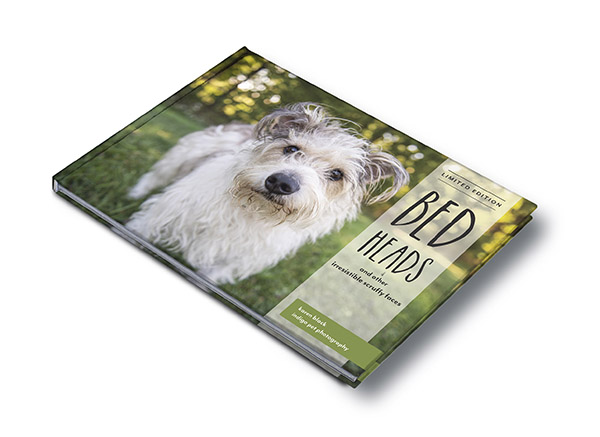 Bed heads book cover mock up